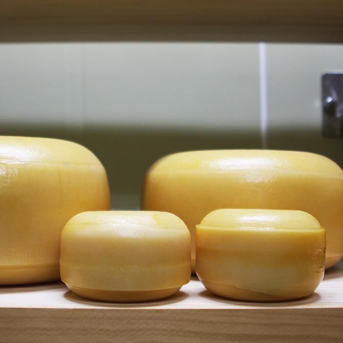 [9] 고다 치즈 원형 귀염 덩어리 500g